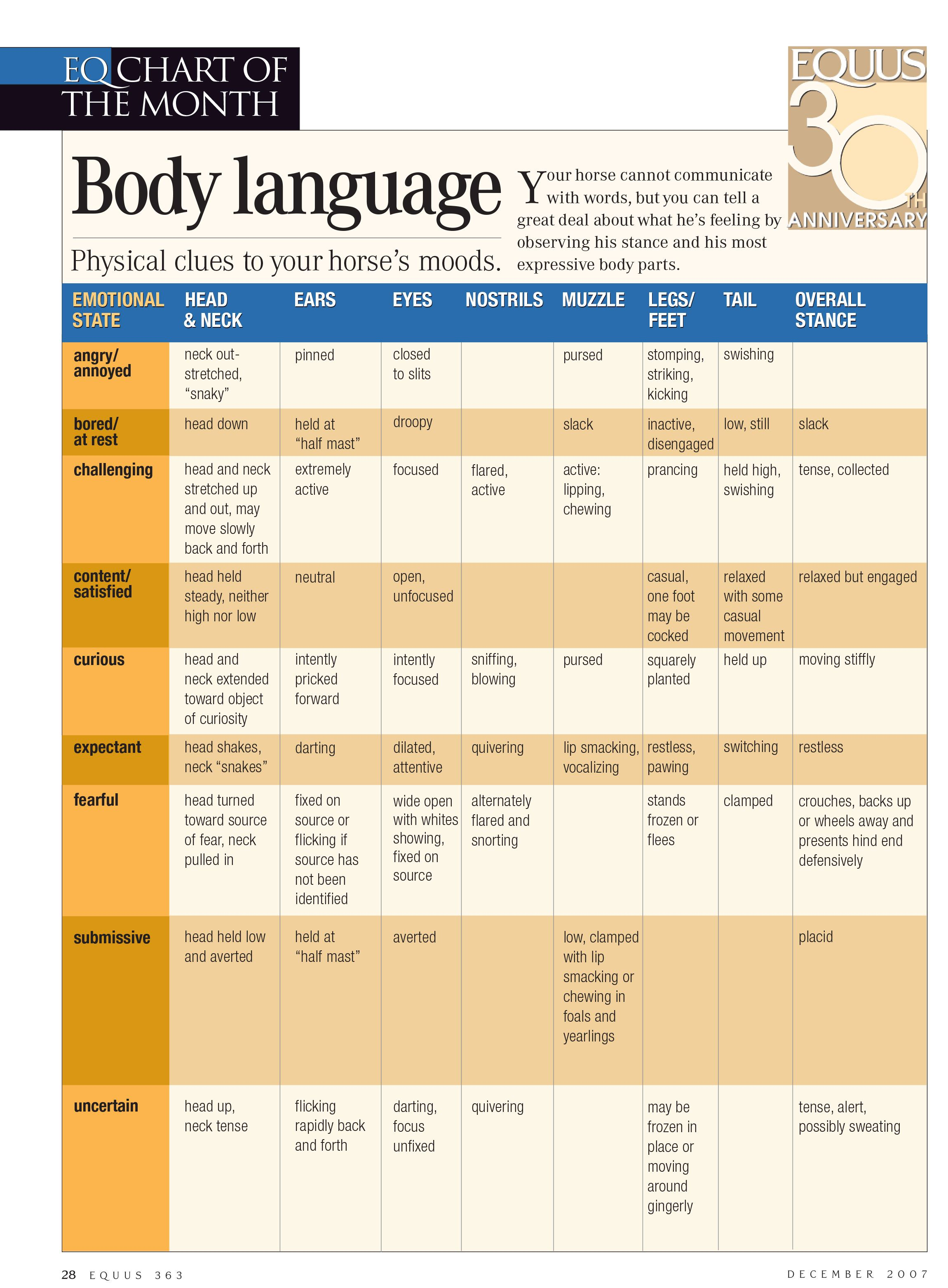 Use this body language chart to understand your horse   mood through his physical clues also rh pinterest