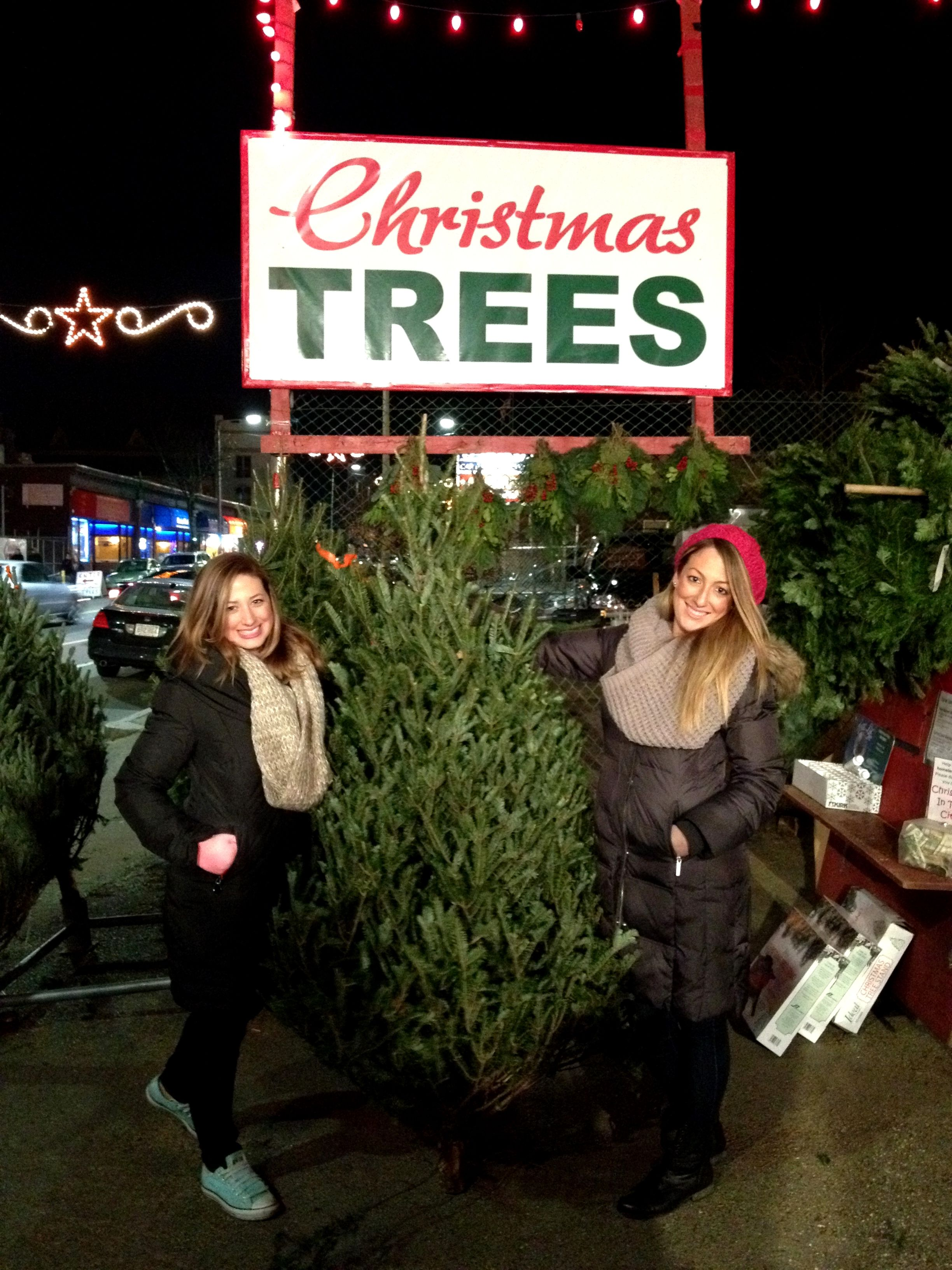 Christmas Tree Shop Medford Ma Gallery Di 2020