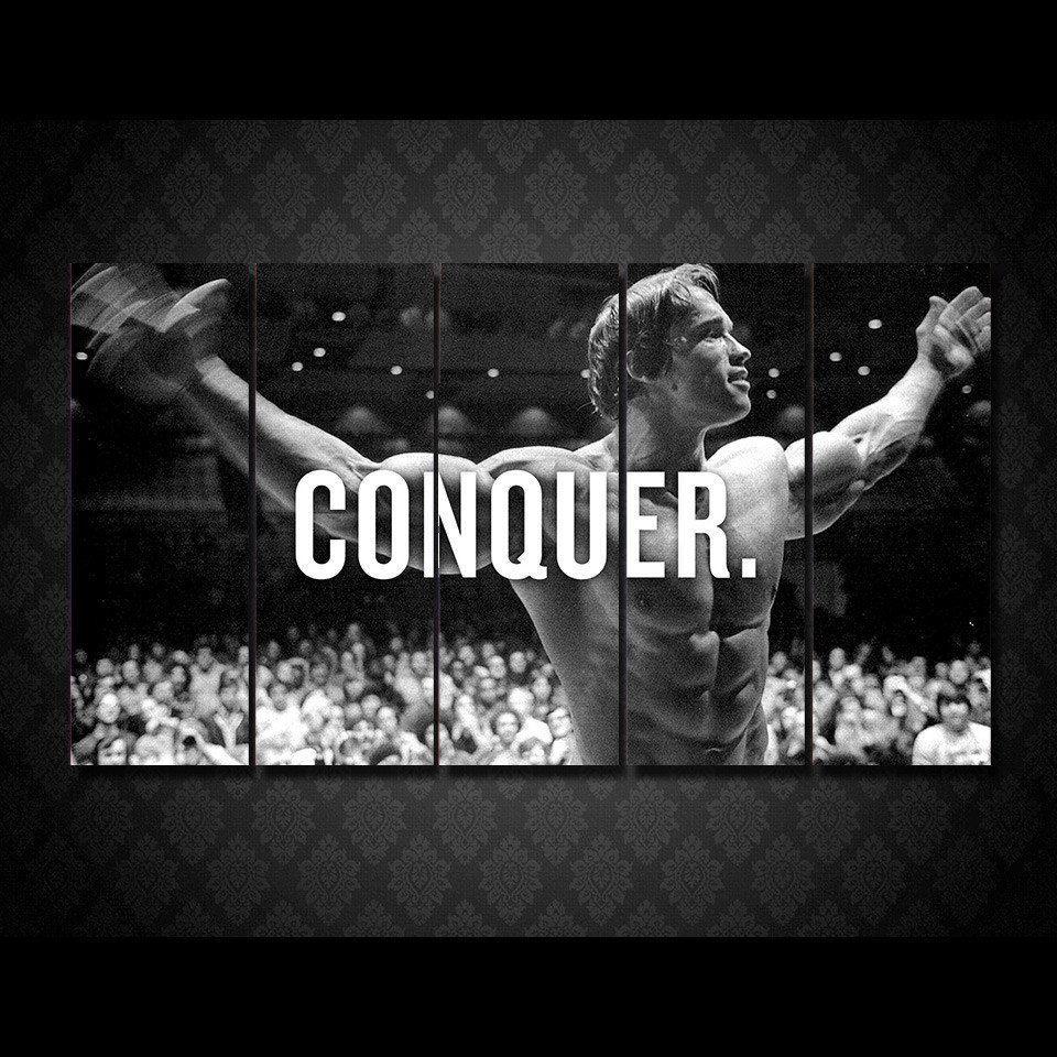 Limited Edition Arnold Schwarzenegger Conquer Schwarzenegger Bodybuilding Arnold Schwarzenegger Bodybuilding Bodybuilding Motivation Quotes