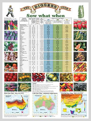 Gardening Planting Guides For Australia Organic Vegetable Garden
