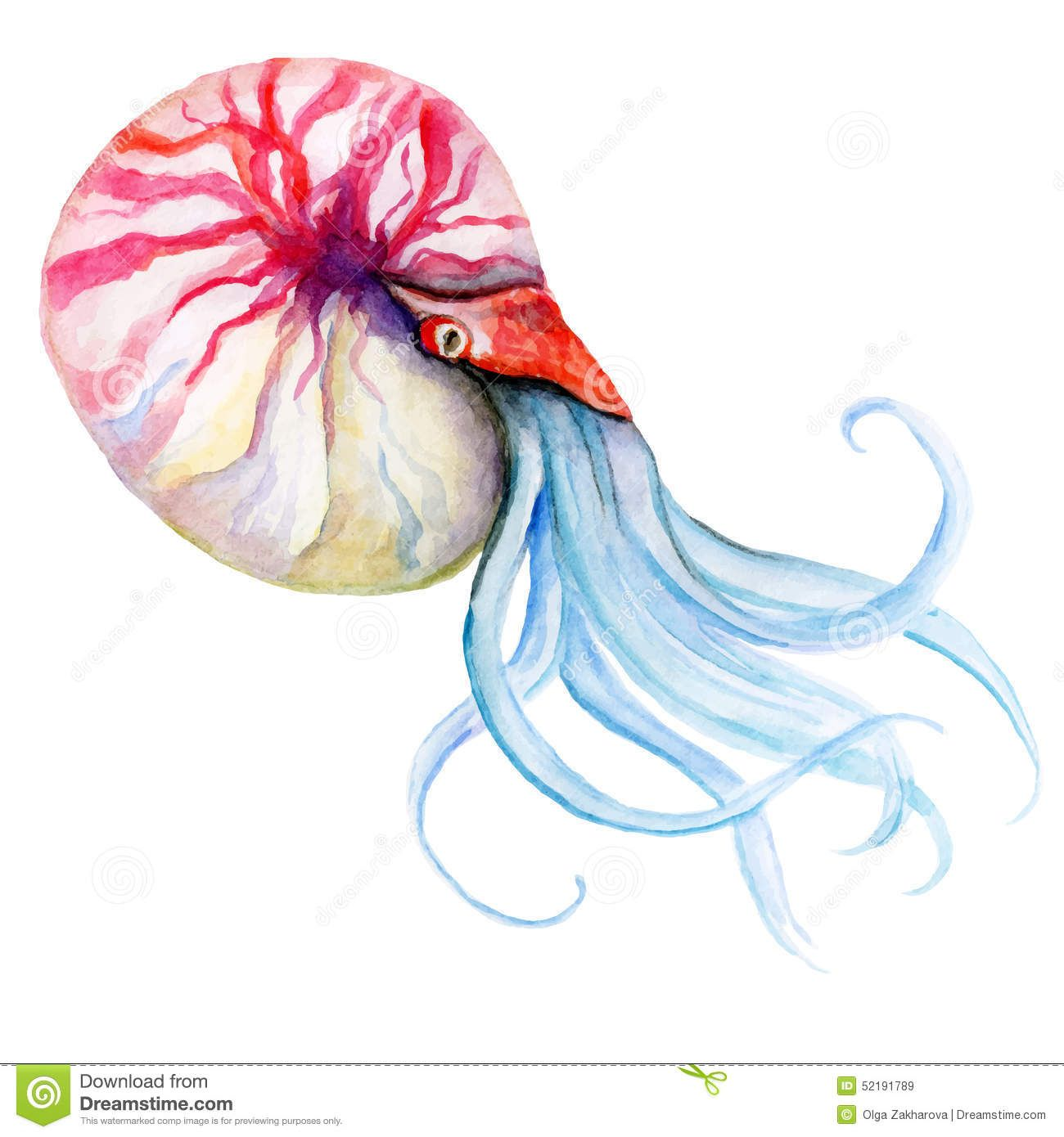 Watercolor Sea Creatures Google Search Watercolor Sea Summer