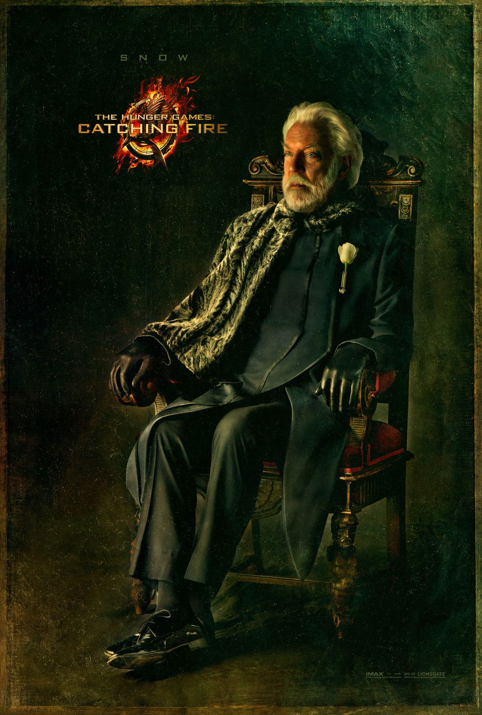 The Hunger Games: Catching Fire - Movie Poster #5