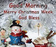 Good Morning Merry Christmas Week Merry Christmas Quotes Wishing You A Merry Christmas Quotes Christmas Week