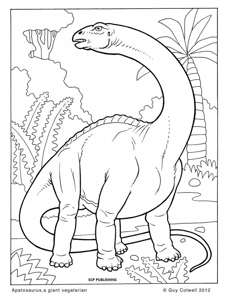 http://ColoringToolkit.com --> dinosaur coloring page --> For the ...