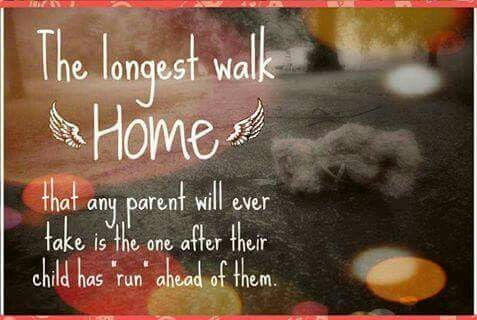 A Long Long Walk Grief Rou Missing My Son Quotes Grieving