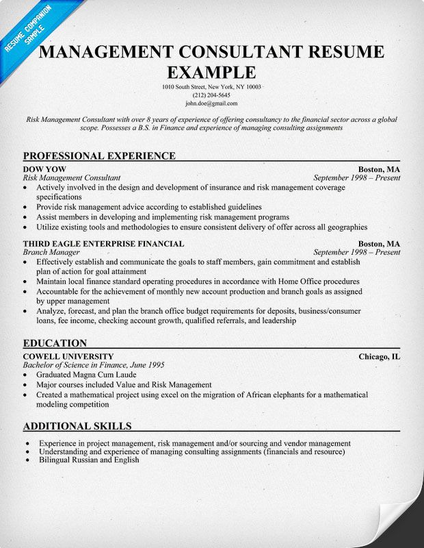 Management Consultant Sample Resume Business Articles Pinterest