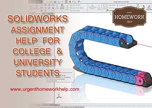 24/7 homework help hotline