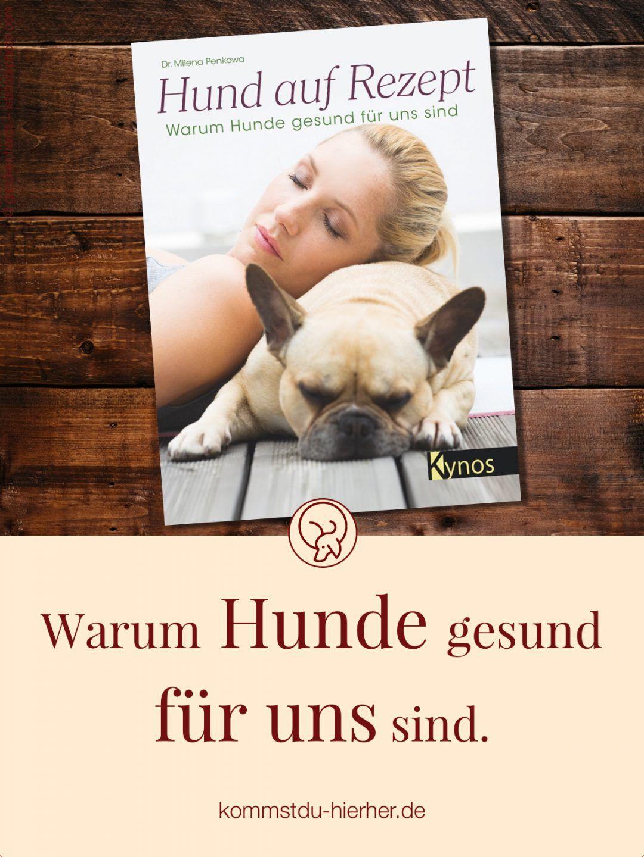 Hund Auf Rezept Warum Hunde Gesund Fur Uns Sind Buchrezension Hunde Hundeverhalten Therapiehund