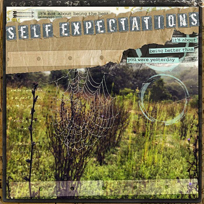 SelfExpectation
