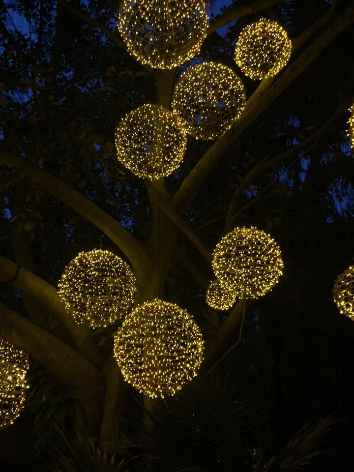 Light Balls Dangling From Trees Ball Lights Outdoor Lighting Christmas Decorations