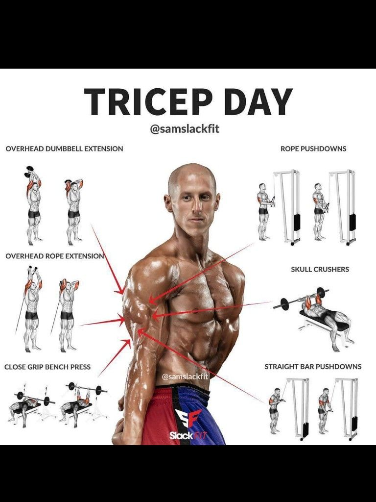 Triceps are important be sure to work out all muscle groups to