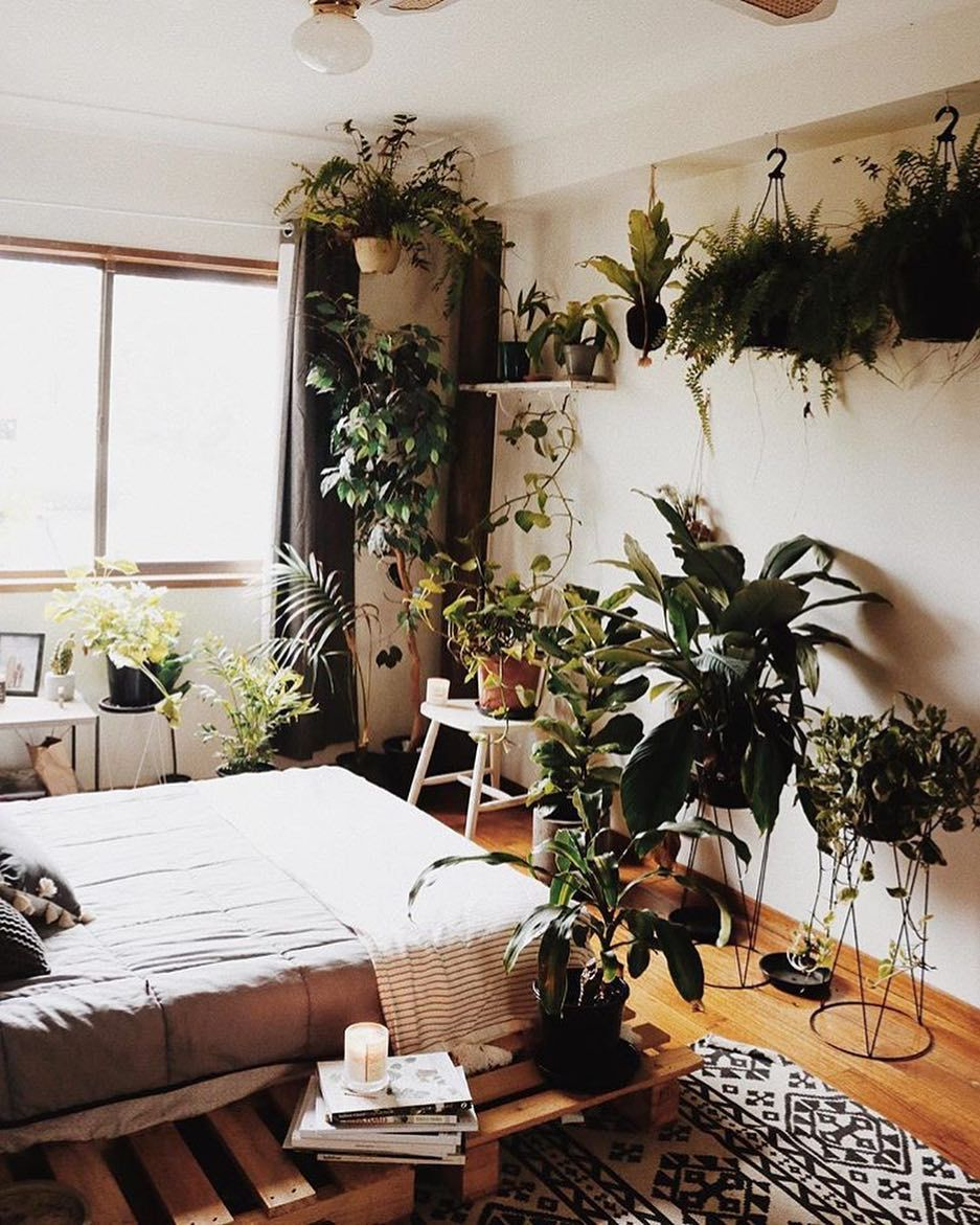 16,16 Likes, 16 Comments - Urban Jungle Bloggers