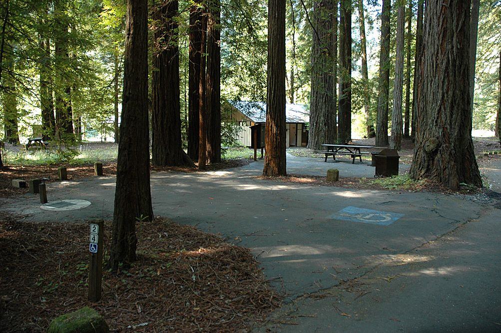 Grizzly Creek Redwoods State Park Campground : As Crowds Diminish Prairie Creek Redwoods Stands Tall / Cheatham grove 0.7 mile loop