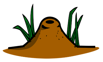 Ant Hill | Animals &am...