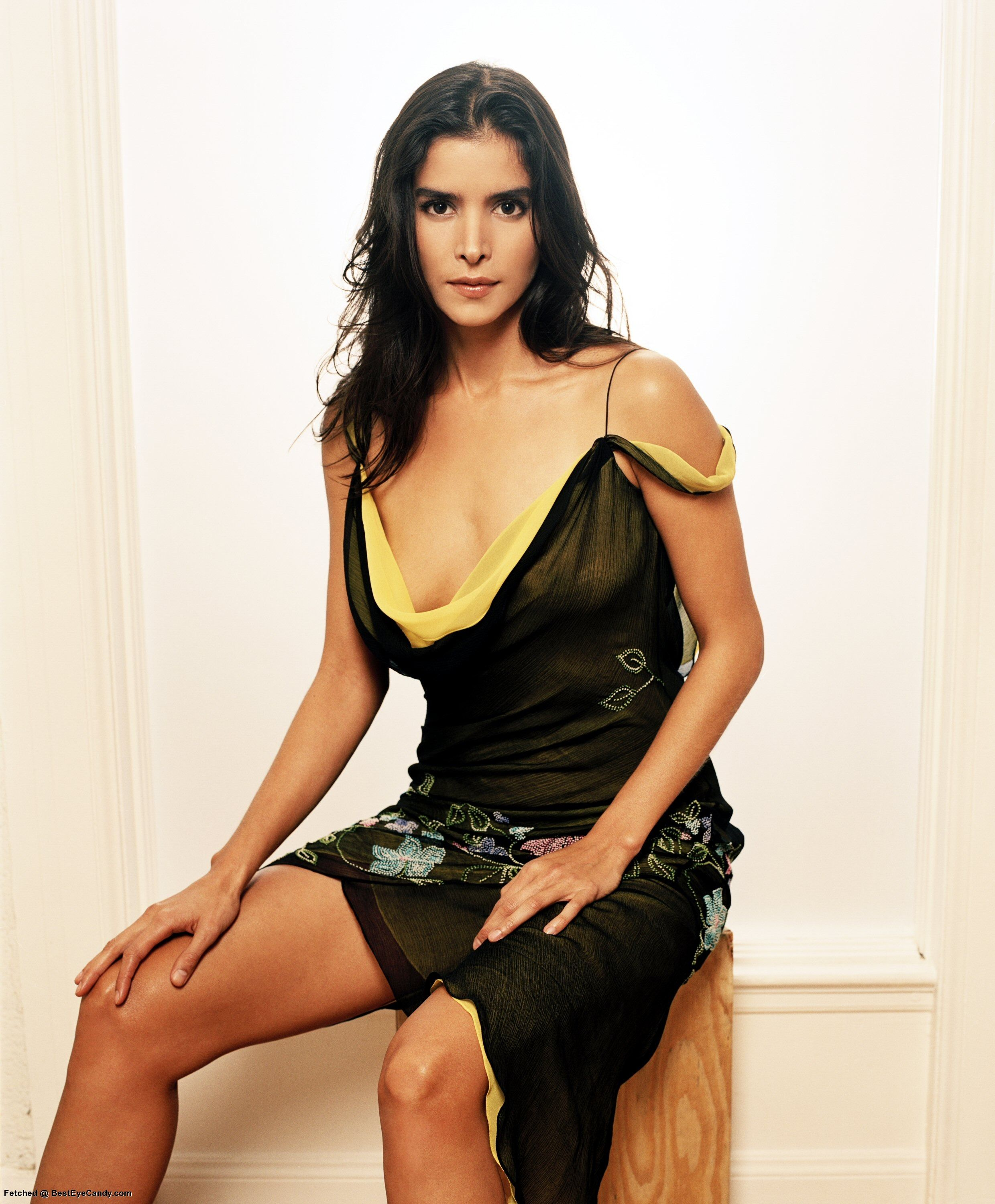 patricia velasquez married