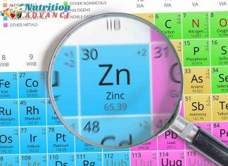 10 Low-Carb Foods That Are High in Zinc