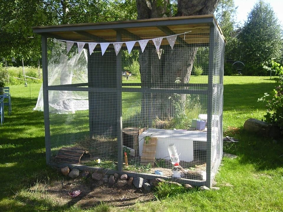 Summer house for our bunnies