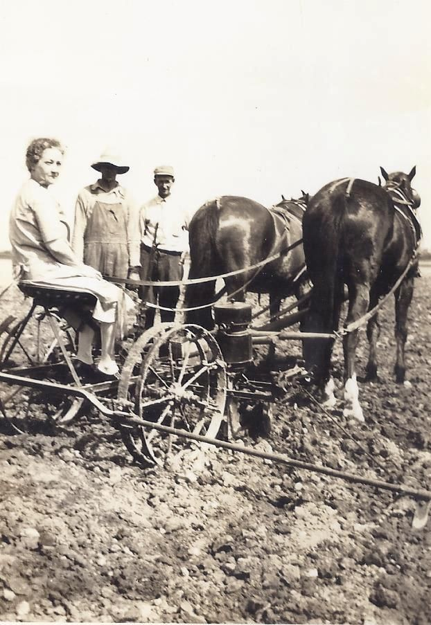 Woman Posing On Horse Drawn Corn Planter Farm Life Pinterest