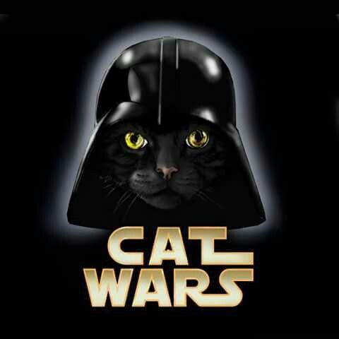 Catwars Star Wars Illustration Cat Art Cats