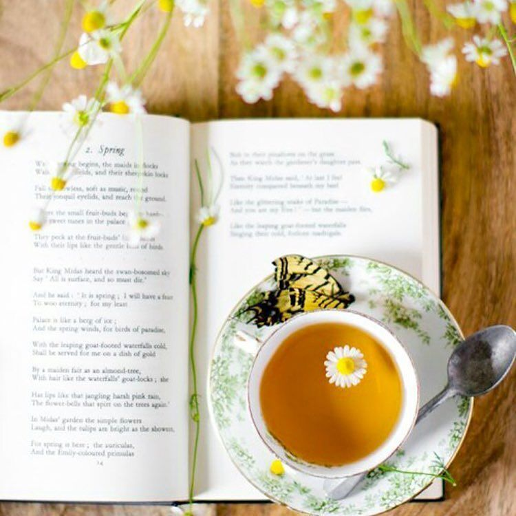 Spring is in the air and we're taking it all in #teasetea #teatime #tealover #springtime #sunshine #flowers #love . #tea #igtea #teaholic #teaproblems #tealife #goaldigger #girlboss #ladyboss #bossbabe #fitgirls #dreamer #goals #motivation #qood #smallbiz #bigdreams #entrepreneur #solopreneur #f4f #startup #igboss #c4c
