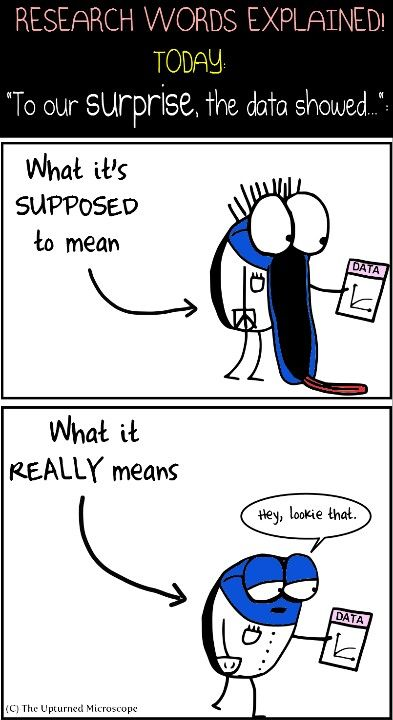 Pin by Kelsey Johnson on The upturned microscope Science