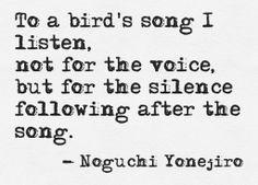 ♔ Birds Uℓviỿỿa S.