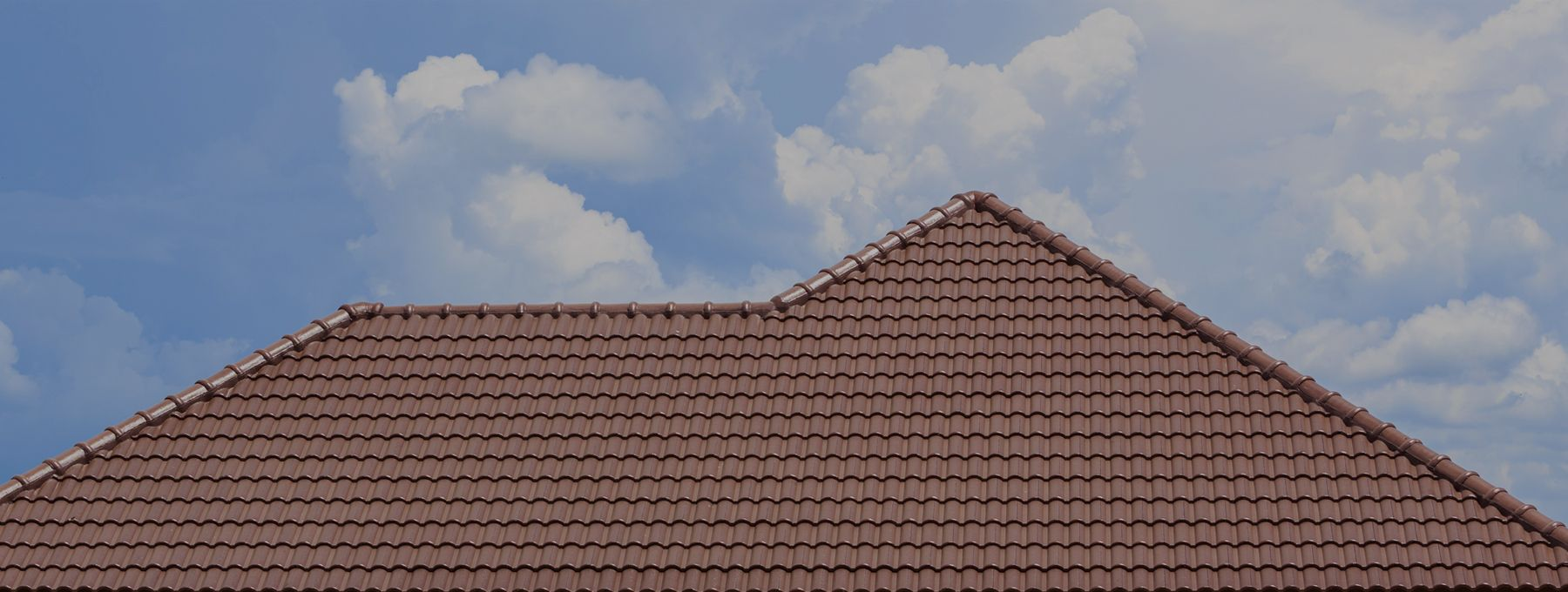 Roof Cleaning Greenville, SC Zap Cleaning Roof repair