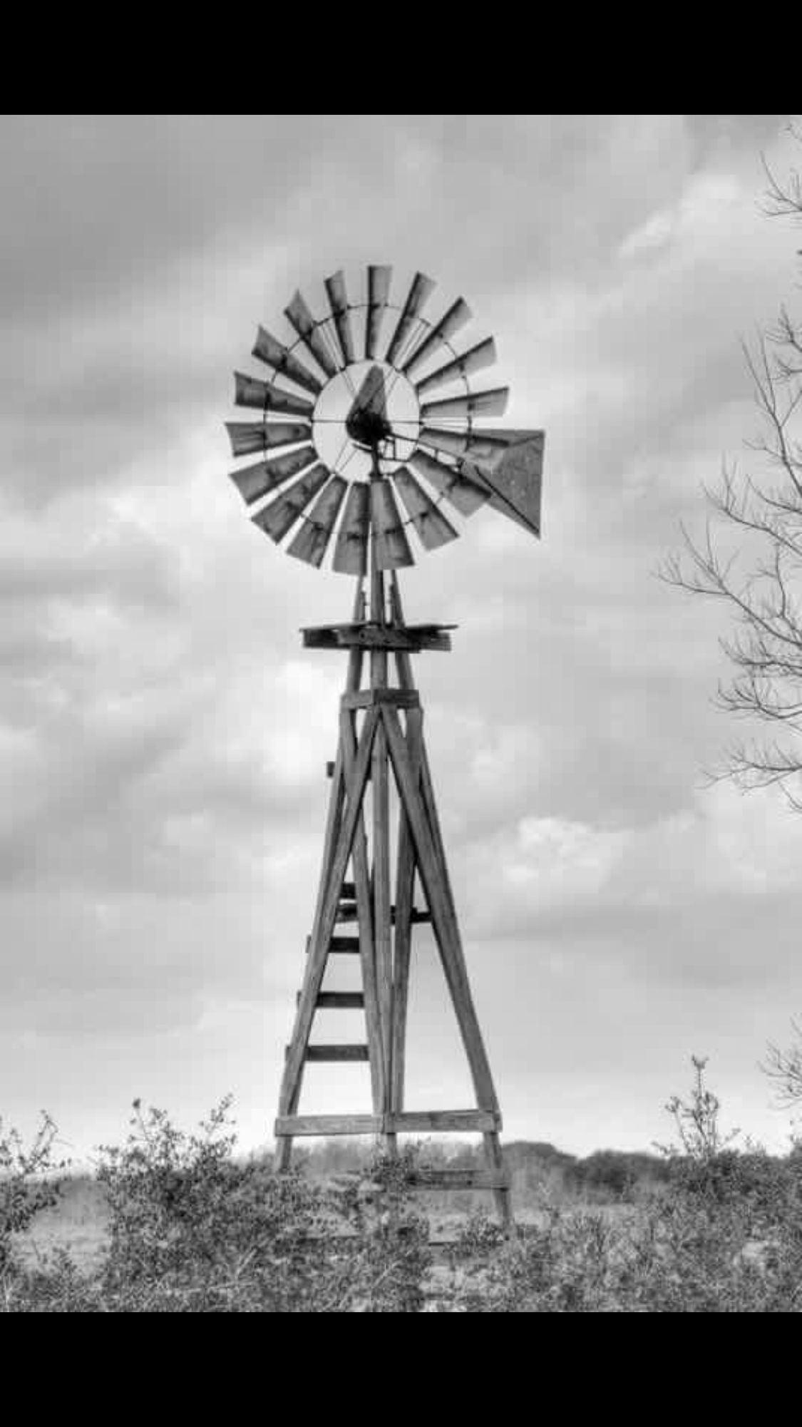 Pin by Shirlee Clark on Must Love Texas in 2019 | Farm