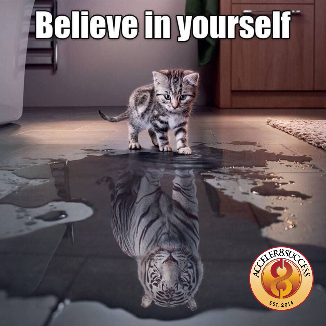 Believe In Yourself In 2020 Beautiful Cats Cat Day Believe In You