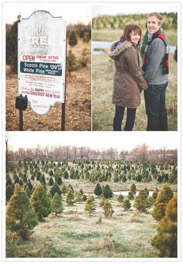 I Don T Know If You Re Doing Fall Pics But If Not I Like The Christmas Tree Idea Christmas Photography Christmas Engagement Christmas Tree Farm