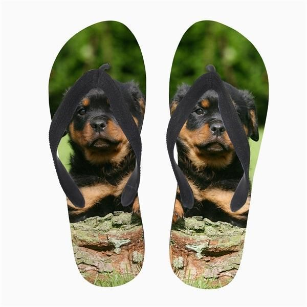 0c53404e9c89 Rottweiler Beach Slippers for Women  fashion  clothing  shoes  accessories   womensshoes