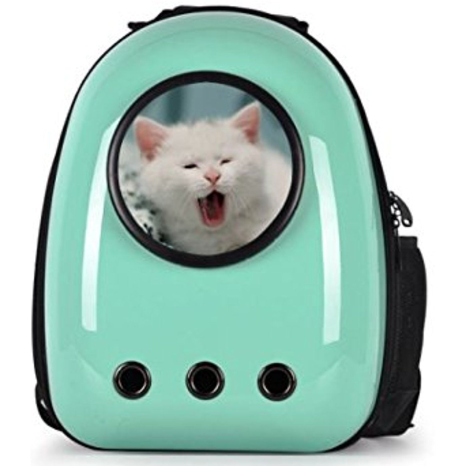 KA Company Astronaut Pet Cat Dog Puppy Carrier Travel Bag Space Capsule Backpack Breathable In Green