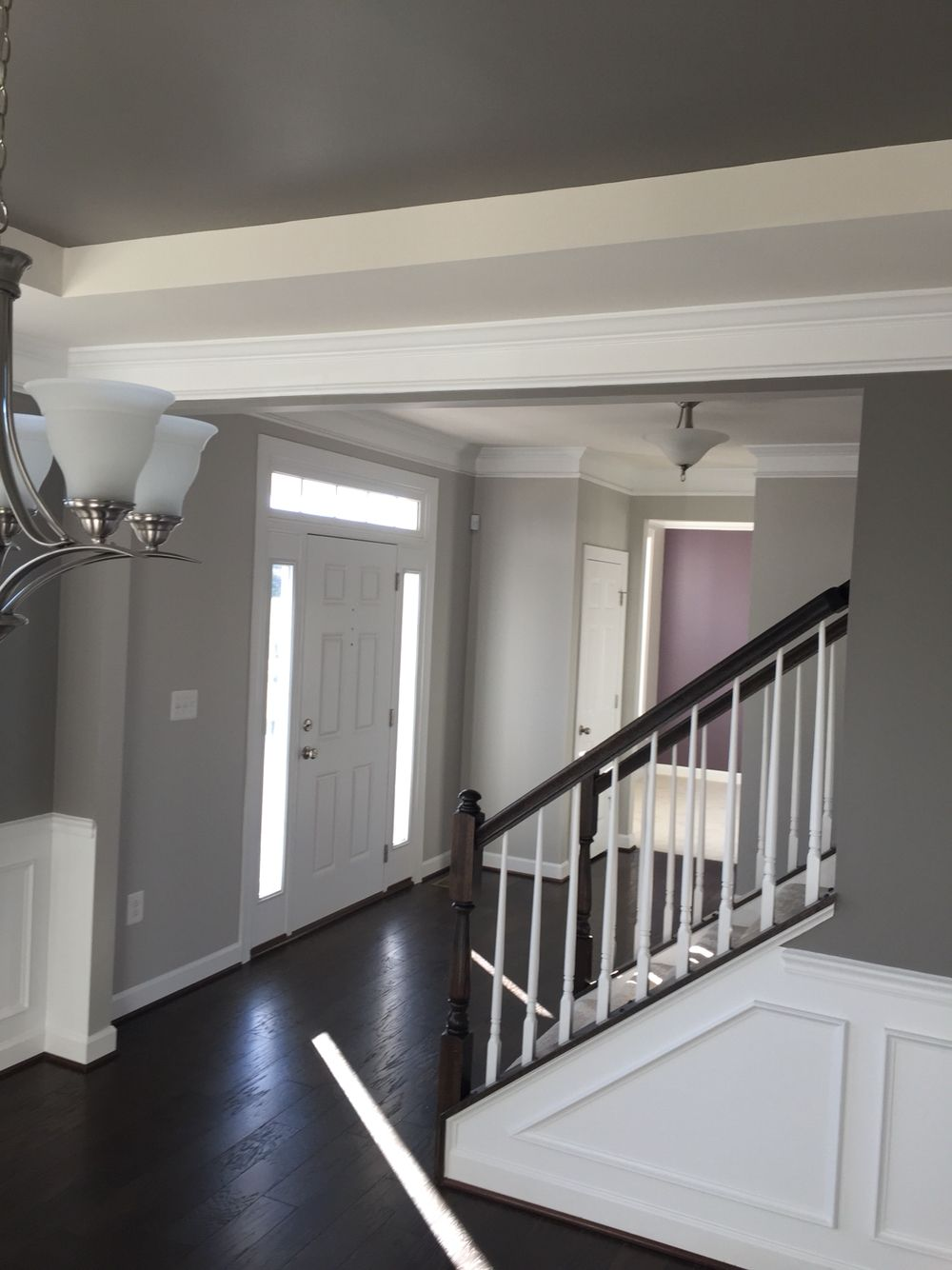 Shaw Flooring Bison Sherwin Williams Paint Repose Gray Entry Dovetail Dining Room Expressive Plum Accent Wall