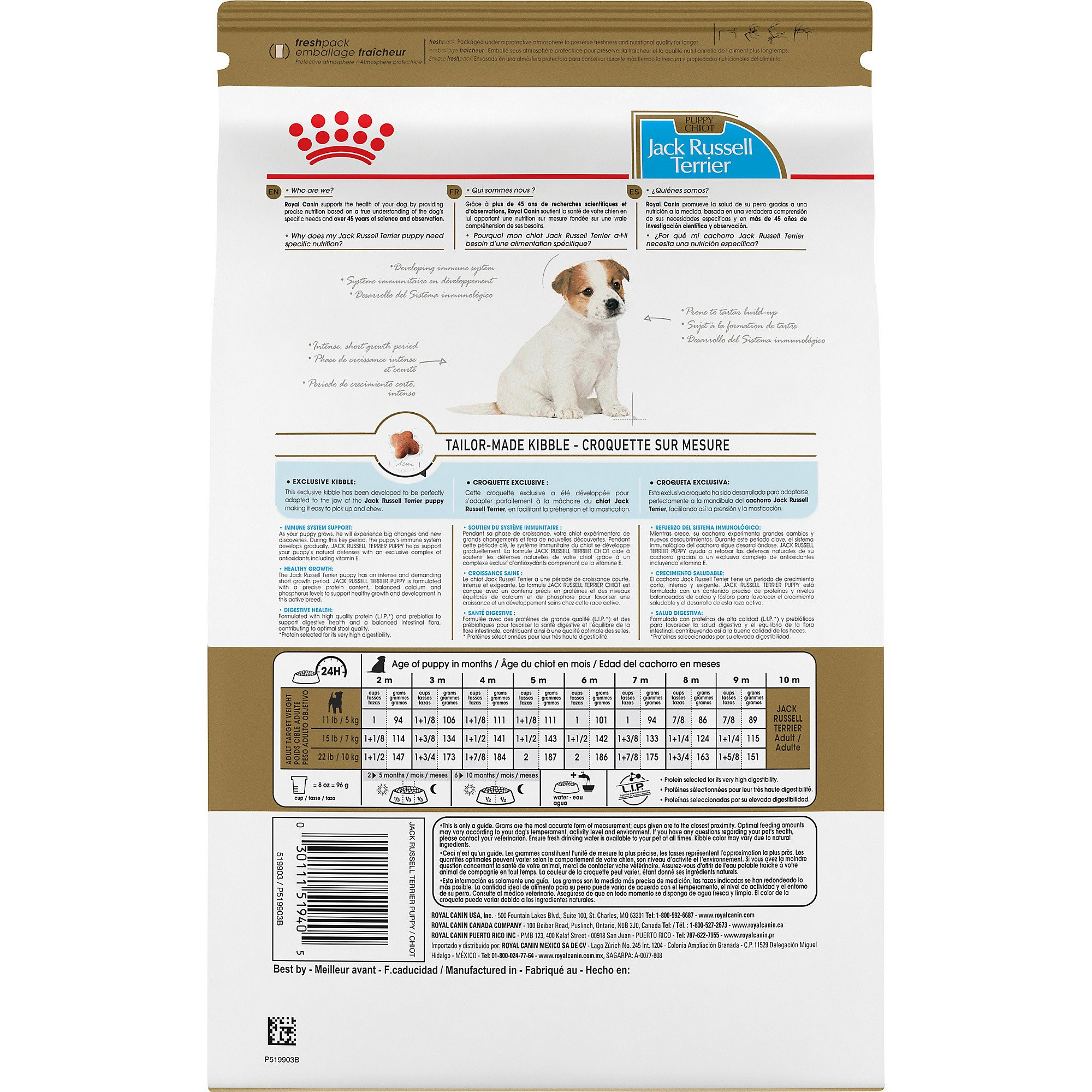 Royal Canin Breed Health Nutrition Jack Russell Terrier Dry Puppy