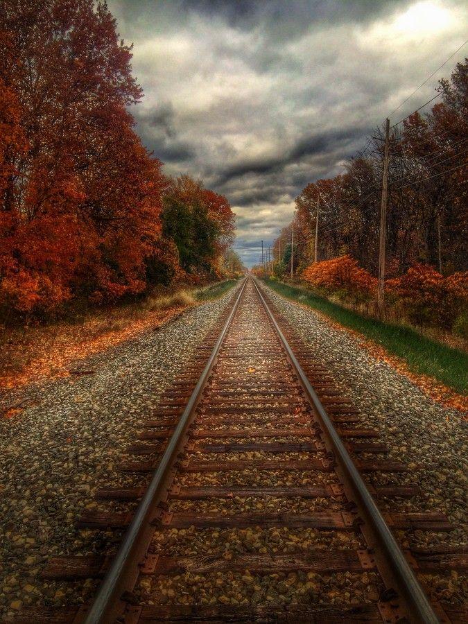 Autumn Tracks in Ohio