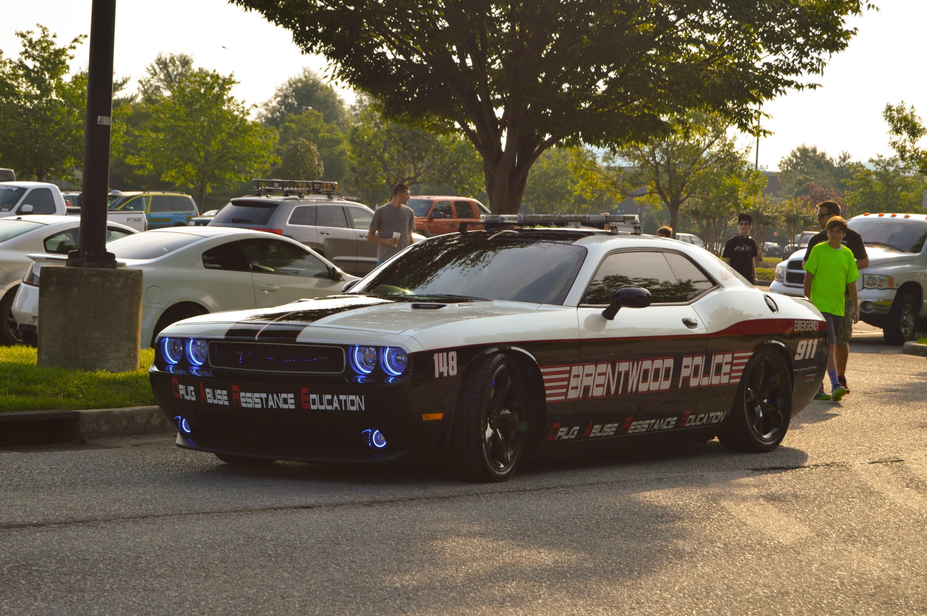 d a r e dodge challenger police car vehicles you love pinterest police cars dodge. Black Bedroom Furniture Sets. Home Design Ideas