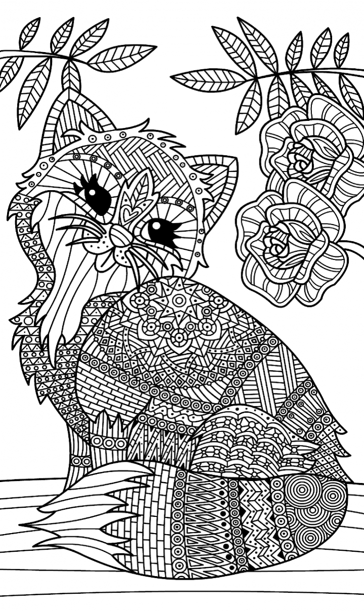 Pin by ira on Раскраски pinterest coloring pages cat coloring