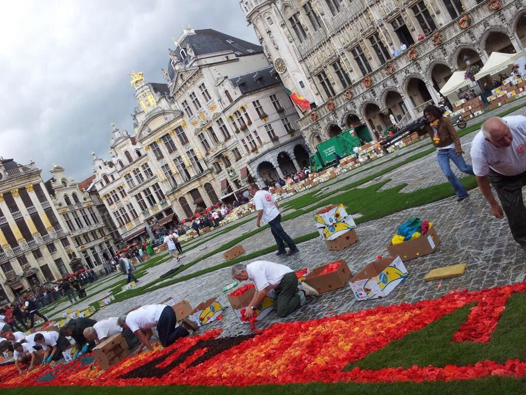 The making of....the flower carpet