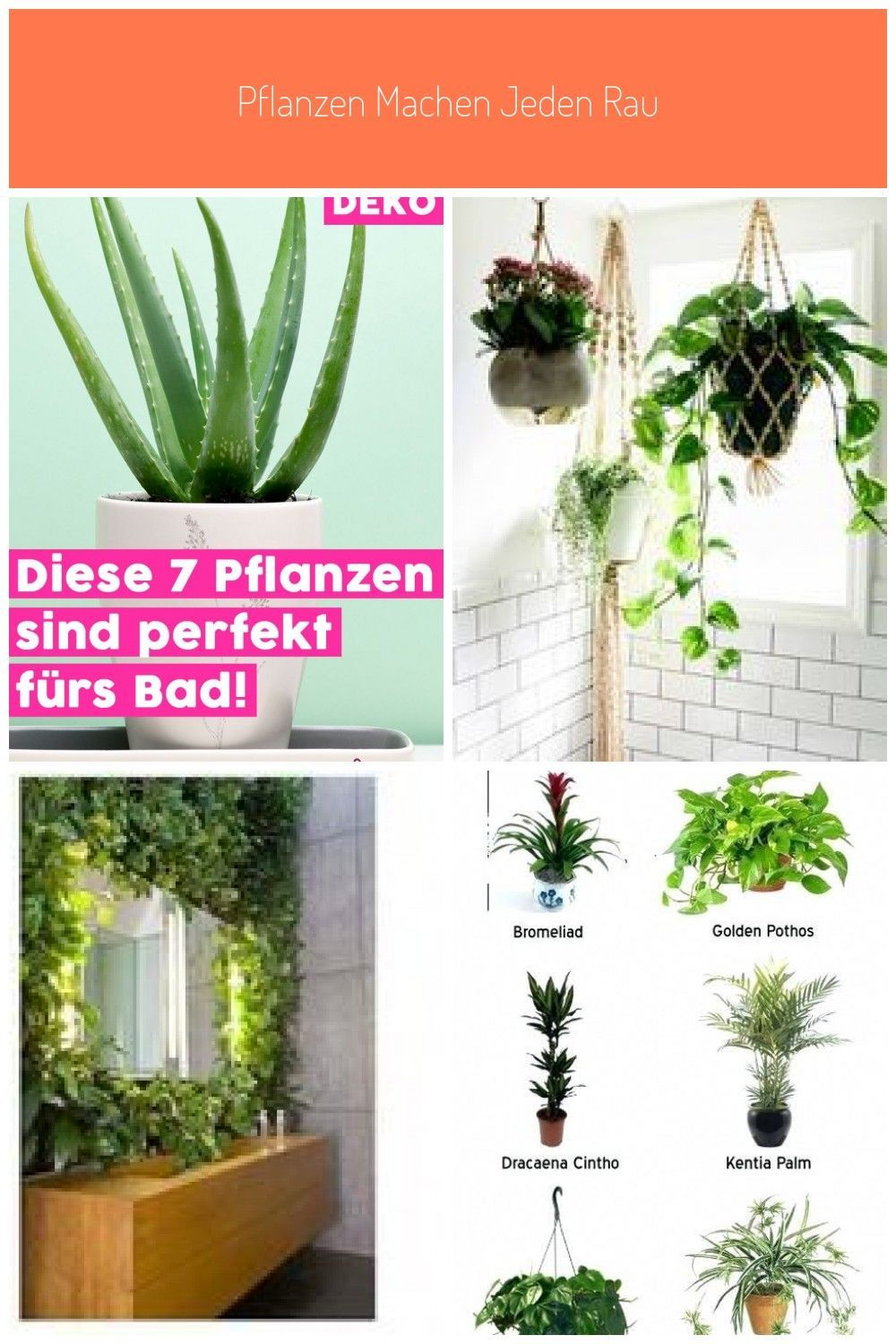 Plants Make Every Room More Cozy And Beautiful But Not Every Plant Leads In 2020 Pflanzen Badezimmerpflanzen Pflanzen Im Badezimmer