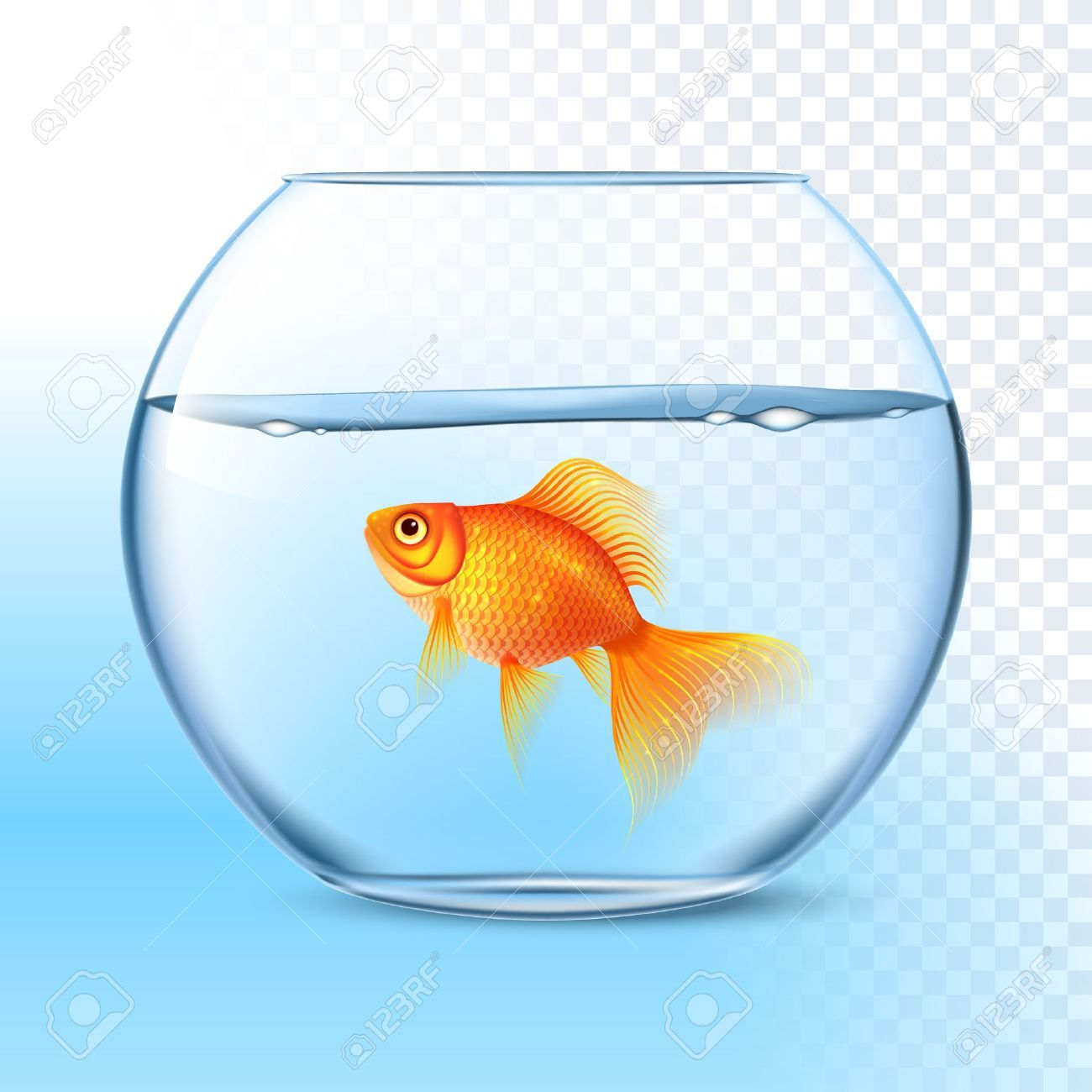 43++ Aquarium fish bowl clipart information