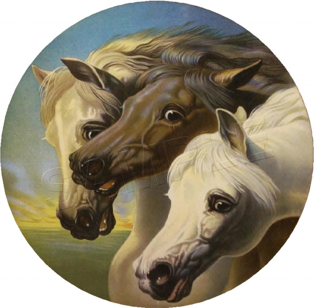 ARABIAN HORSES POSTER ANIMALS BEAUTIFUL WALL ART PICTURE PRINT LARGE  HUGE