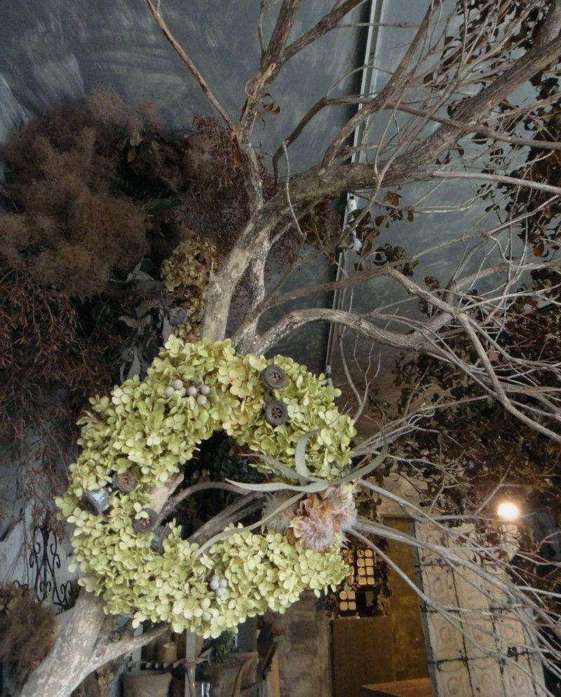 アナベルで製作したドライフラワーのリース アジサイ アナベル グリーン ナチュラル リース 装飾 フラワーショップ 兵庫 西宮 苦楽園 画像あり ドライフラワー フラワーショップ アジサイ