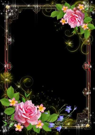 Rich Glittering Photo Frame Template For Passionate Photo Frame Psd Png Download Photo Frame Wallpaper Wedding Background Wallpaper Flower Frame
