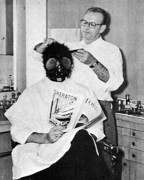 Image result for the fly 1958 makeup test