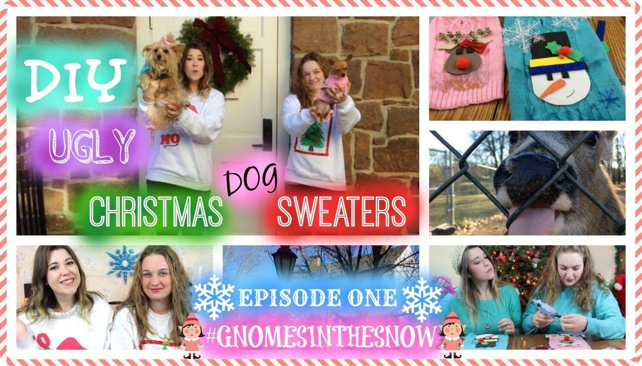 DIY Ugly Christmas Dog Sweaters + Reindeer!