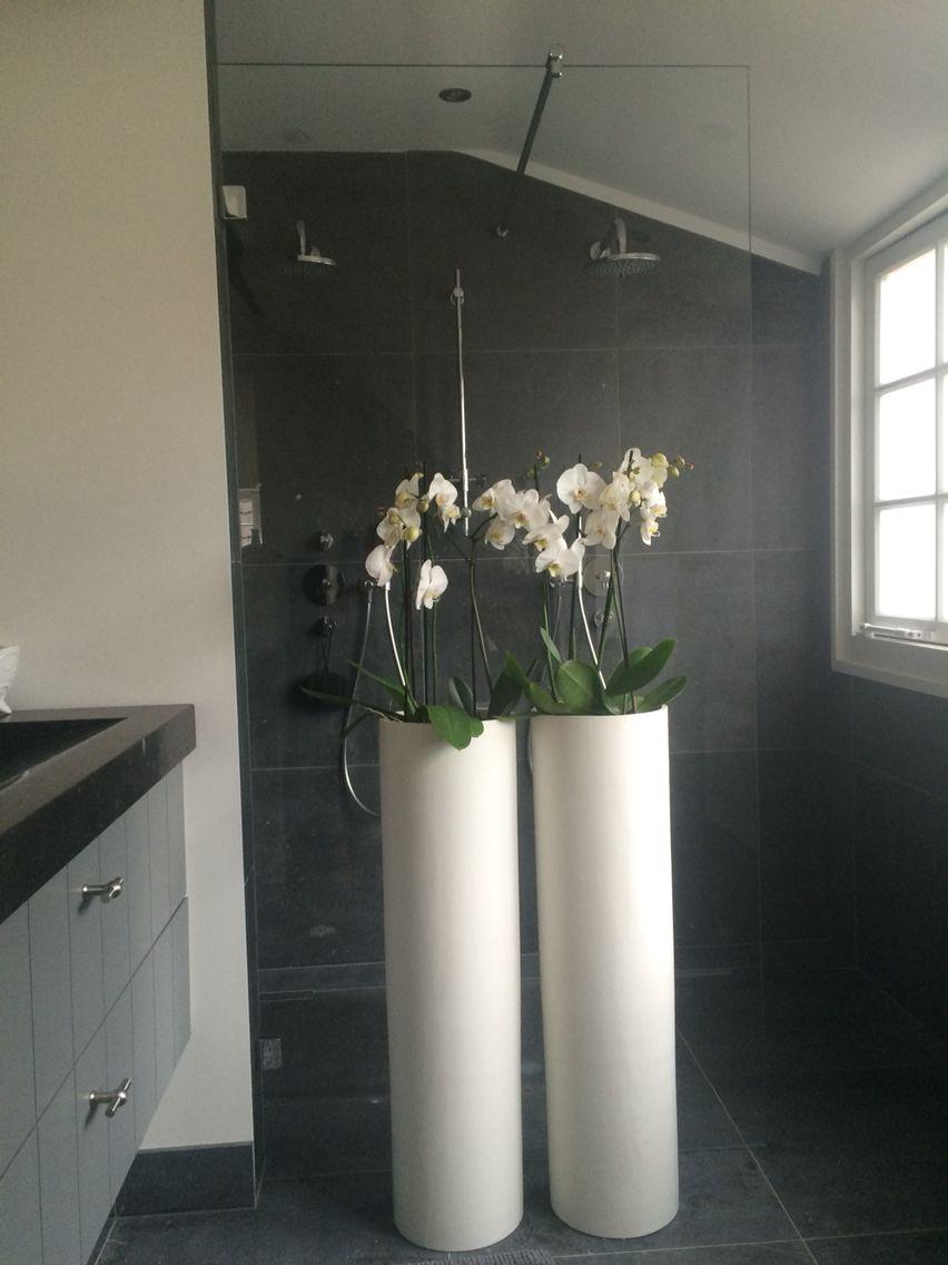 Indoor plants # planten # badkamer   badkamer   Pinterest ...