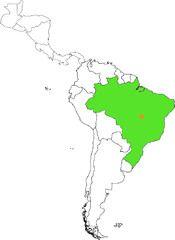 Latinalaisen Amerikan Valtiot Flashcards Quizlet