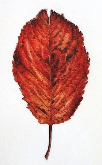 leaf painting techniques - photo #20