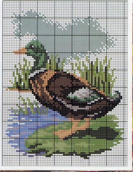 Схема картинки утки