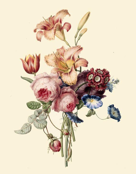 Antique Bouquet Of Peonies Pink Roses Fleur De Lys Lilies Etsy In 2020 Vintage Flower Prints Antique Bouquet Peony Illustration